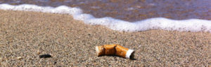 maui cigarette butt free beaches campaign