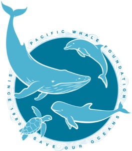 adopt a whale for free and name it
